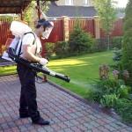 обработка растений садовым аккумуляторным опрыскивателем