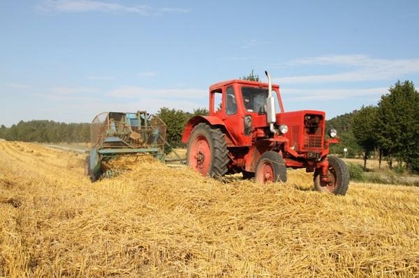 трактор МТЗ-50 для сельскохозяйственных работ